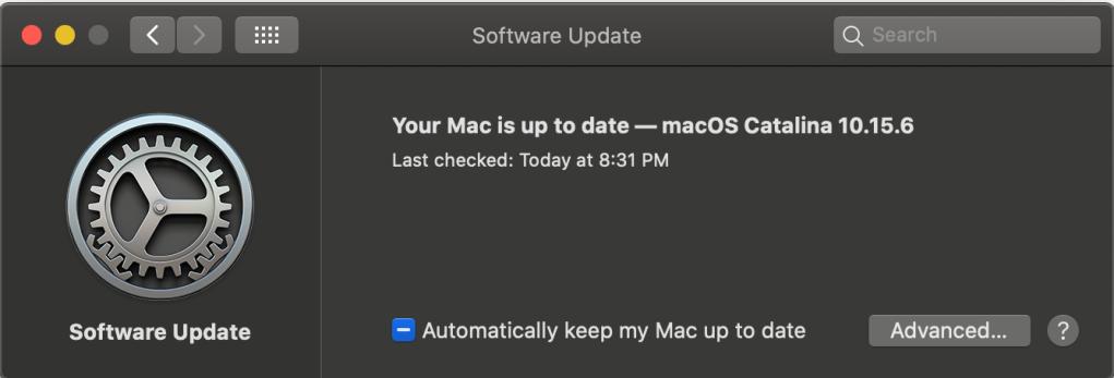Screenshot of successful update to 10.15.6